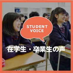 在学生・卒業生の声